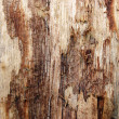 Wooden brown grunge background — Stockfoto