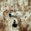 Old rusty lock on the door — Foto Stock