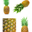 Pineapple set isolated — Zdjęcie stockowe