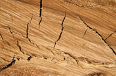 Fondo de madera marrón grunge — Foto de Stock