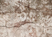 Grunge cement background — Stock Photo