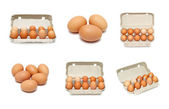 Eggs set — Stock Photo