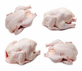 Jeu de poulet cru — Photo