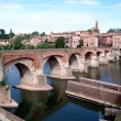 Albi (France) Midi-Pyrénées, Tarn Dep. — Stock Photo #5703284