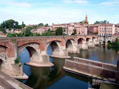 Albi (France) Midi-Pyrénées, Tarn Dep. — Stock Photo