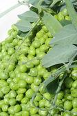 Peas on plate — Stock Photo