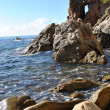 Sea shore, Costa Brava landscape (Spain). — Stock Photo