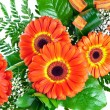 Bouquet of gerberas — Stock Photo #5531639