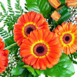 Stock Photo: bouquet of gerberas