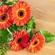 Bouquet of gerberas — Stock Photo #5531649