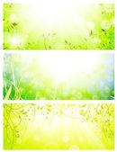 Green fresh sunny banners — Stock Vector