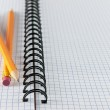 Sheet in a cage with two pencils — Stock Photo