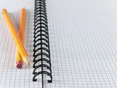 Foglio in una gabbia con due matite — Foto Stock