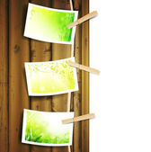 Green foliage photos pinned to a rope — Stock Vector