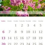 Kalendář 2012, květen — Stock fotografie