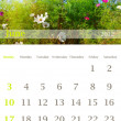 Stock Photo: Calendar 2012, June