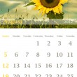 Calendar 2012, August — Stock Photo