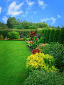 Summer flower garden — Stock Photo