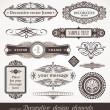 Decorative vector design elements & page decor — Stock Vector