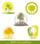 Vector set - palm tree emblems & labels — Stok Vektör