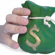 Hand reaching for money bag — Stock Photo #5591925