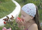 Beautiful little girl smells flower — Stock Photo
