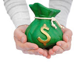 Hand hold a money bag — Stock Photo