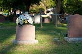 Cemetery in sun light — Stock Photo