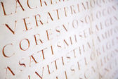 Latince yazı arka plan — Stok fotoğraf