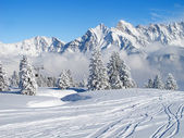 Skiing slope — Stockfoto