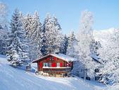 Winter in de alpen — Stockfoto