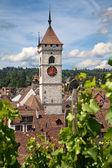 Verano en schaffhausen — Foto de Stock