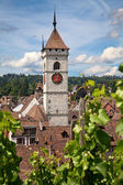 Léto v schaffhausenu — Stock fotografie