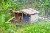 Pequena fazenda balinesa — Foto Stock