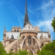 Notre Dame de Paris — Stock Photo #6534687