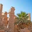 Karnak temple — Stock Photo #6534738