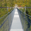 Suspended bridge - Stock Photo