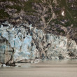 AlaskGlaciers — Stock Photo #6132472