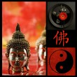 Buddha Collage — Stock Photo