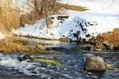 Våren floden — Stockfoto