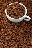 белый кубок с зерна кофе — Стоковое фото