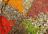Dry spices background — Stock Photo