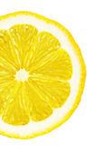 Sekcja cytryny na białym tle — Zdjęcie stockowe