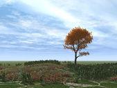 Autumnal tree alone — Stock Photo