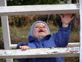 Baby on a ladder — Stock Photo