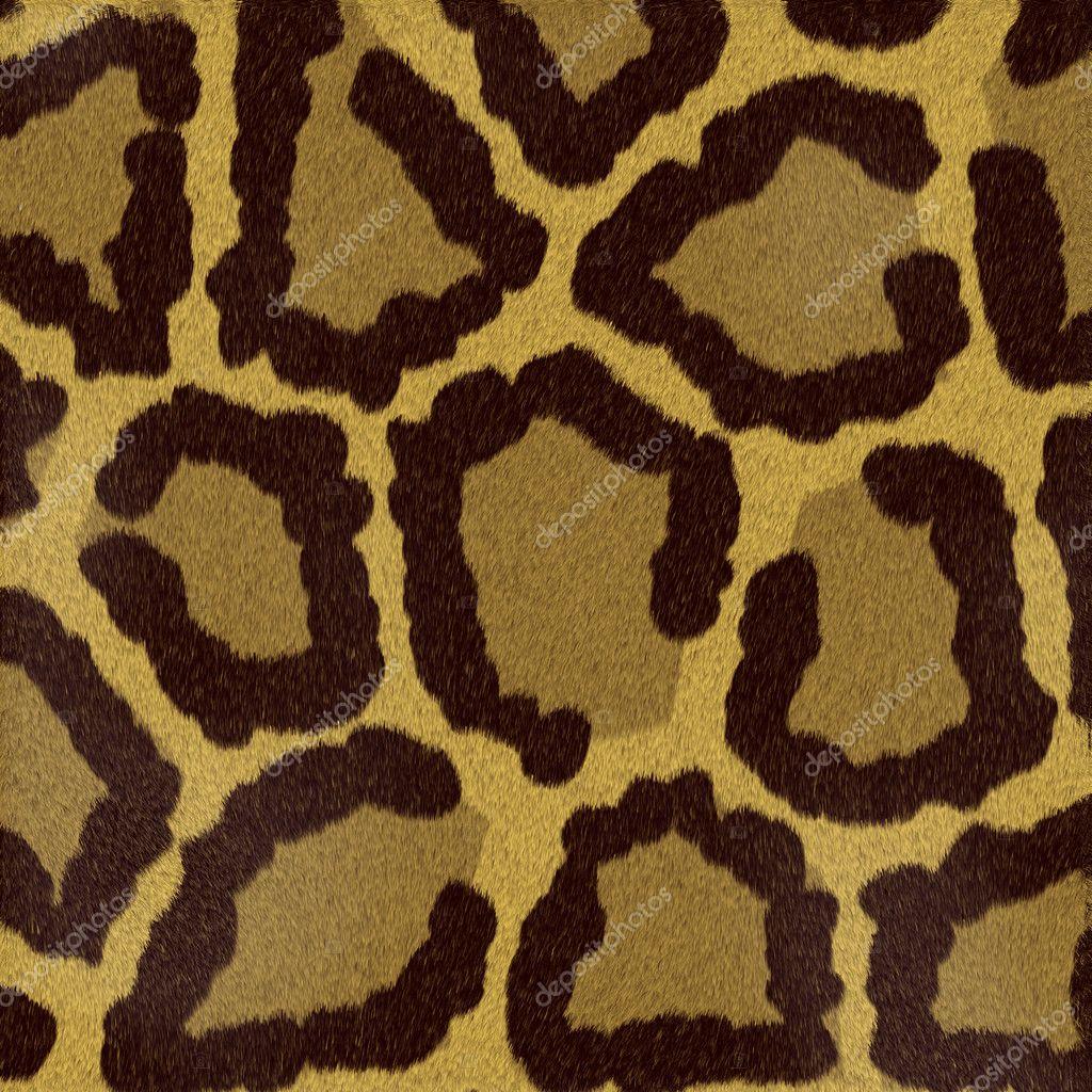 Textures animal — Stock Photo #6189595