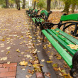 Stock Photo: Autumn park. Rainy weather