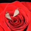 Stock Photo: Broken gold heart in a red rose