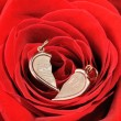 Broken gold heart in a red rose — Stock Photo #6190432