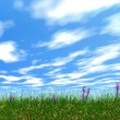 Dense grass — Stock Photo